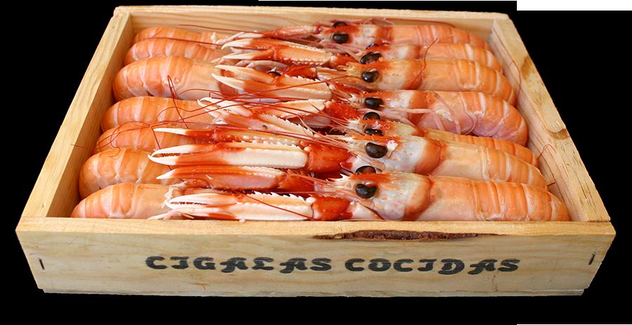 Cigalas de Huelva en caja de madera